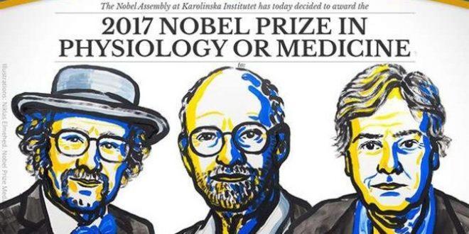 Tiga Ilmuwan Jam Tubuh Meraih Hadiah Nobel Kedokteran 2017
