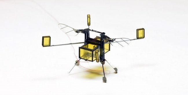 Peneliti Ciptakan Robot Lebah yang Bisa Terbang dan Menyelam