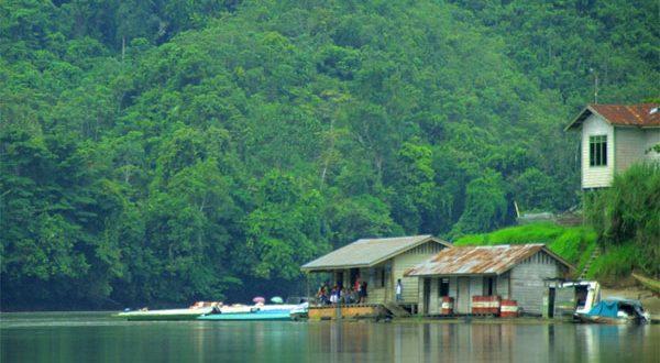 LIPI Cermati Penurunan Fungsi Hutan di Malinau Kalimantan Utara