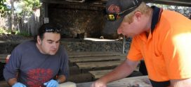 Peneliti Australia Temukan Bakteri Pendaur Ulang Emas