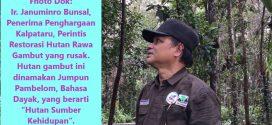 Hutan Memiliki Tenaga Super Untuk Lindungi Bumi Dari Pemanasan Global