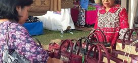 Expo Inovasi UKM Berskala Nasional Tahun 2018 Segera di Gelar di Kalimantan Tengah