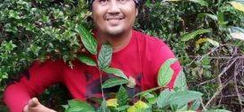 Pemanfaatan Tumbuhan Sebagai Penyedap Rasa Alami